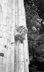 Gargoyle, Jumieges Abbey