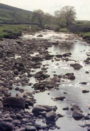 Langsthrothdale - the river