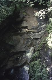 How Stean Gorge, Nidderdale