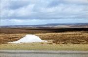 Fylingdale Moor