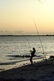 Lone fisherman, evening