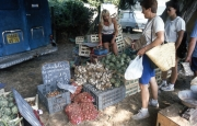 Benodet Market - garlic