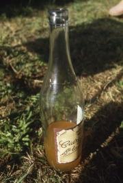 Farm cider