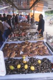 Fish and shellfish stall