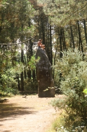 Menhir in the woods, young man on top