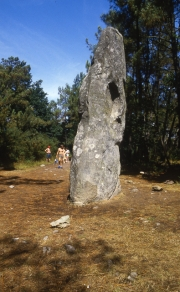 Menhir in the woods