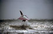 Airborne windsurfer