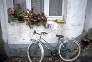 Cottage with flowers and bicycle