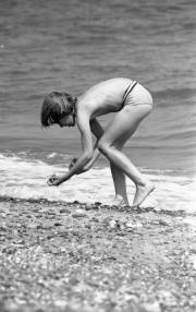 David collecting shells