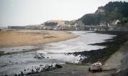 Estuary, tide out