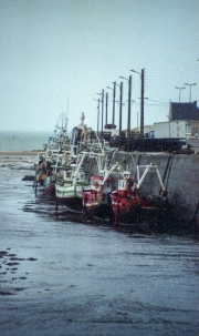 Fishing boats in the estuary