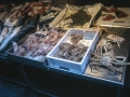 Rialto Market - Fish Stall