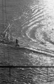 Water-skiing, silhouetted