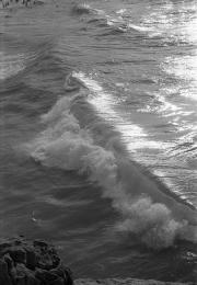 Waves breaking in the bay