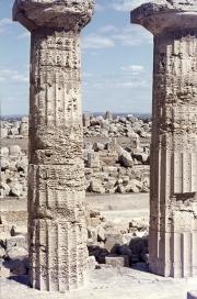 Greek temples at Selinute