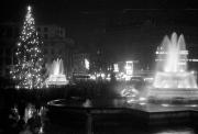 Trafalgar Square Christmas Tree at night, with crowd