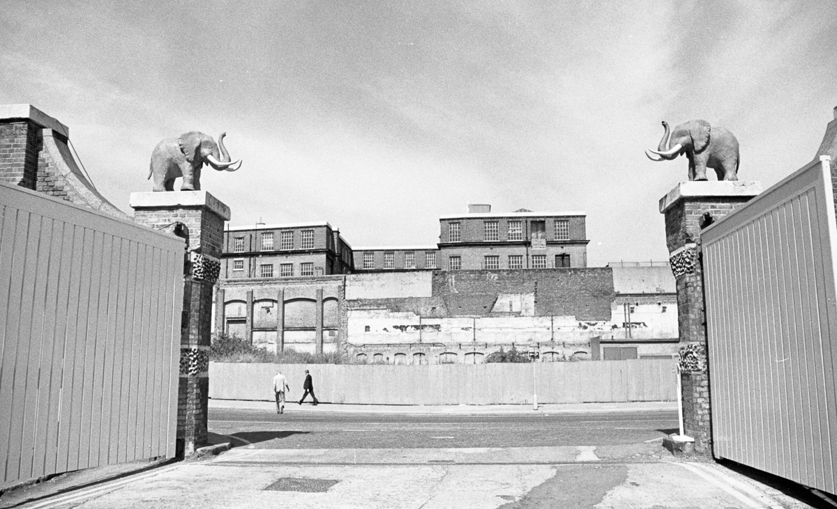 Elephants guarding gates