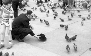 Feeding pigeons in Trafalgar Square