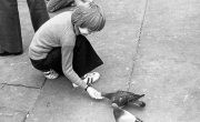 Simon feeding pigeons in Trafalgar Square
